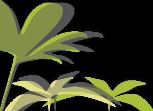 Plantas IZQ